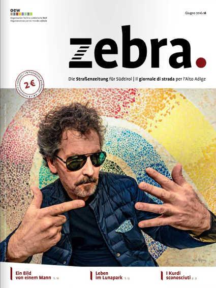 zebra_juni2016